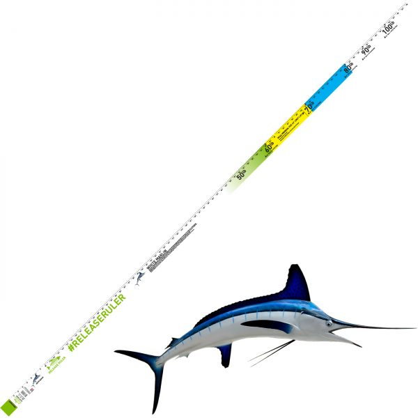 blue marlin ruler