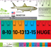 Bonefish Ruler Fishing Measurement Saltwater
