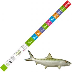 bonefish release ruler
