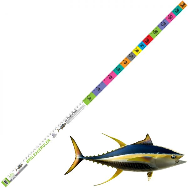 yellowfin tuna ruler