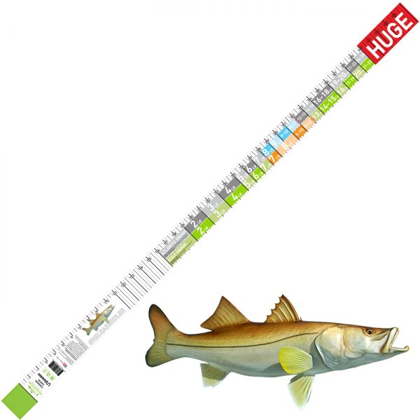 common snook release ruler