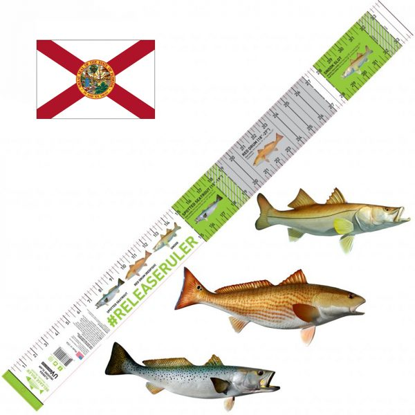 florida inshore slam ruler