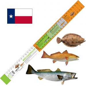 texas inshore slam fish ruler