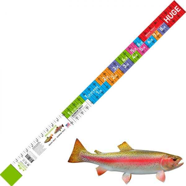 brook and rainbow trout release ruler