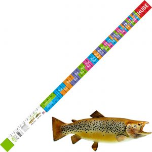 brown trout and lake trout release ruler