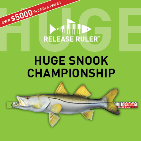 HUGE Snook Tournament.