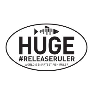 huge release ruler decal