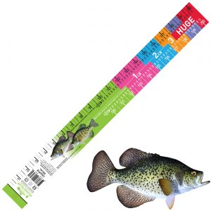 crappie decal ruler
